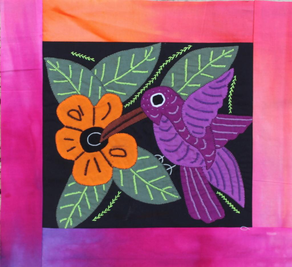 hummingbird mola2